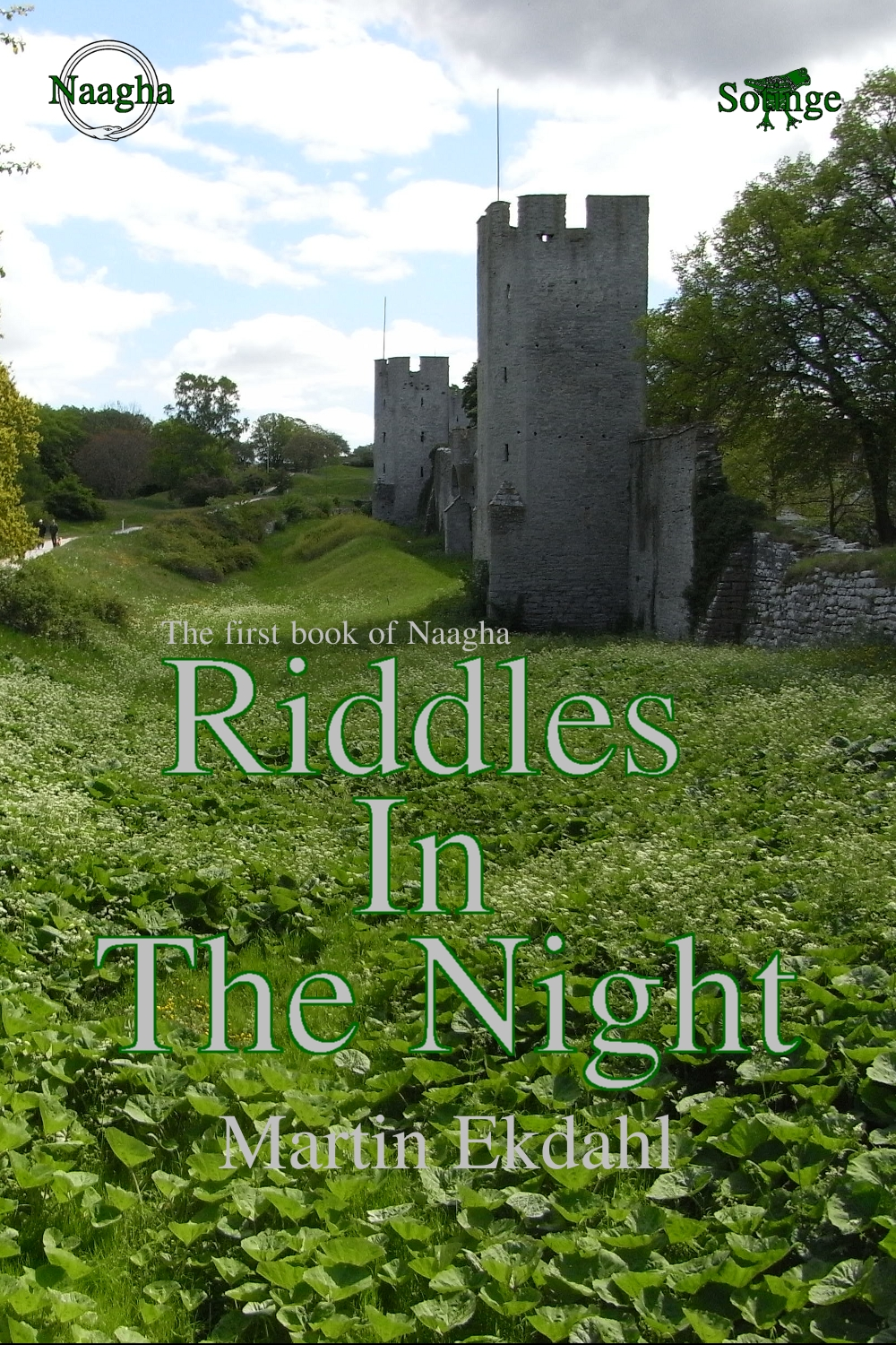 Book cover for Riddles in the night